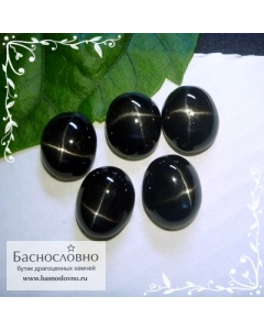 Гарнитур пять чёрных звёздчатых диопсидов (Чёрная звезда) из Индии огранка овал кабошон 12x10мм 28.09 карат (Драгоценный камень)